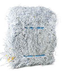 Shredded_paper_small.jpg